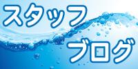 毎日更新!スタッフブログ